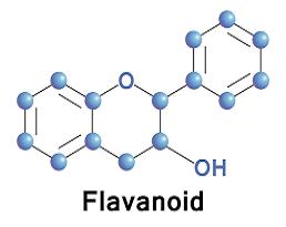 Lợi ích sức khỏe của flavonoid