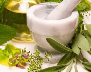 Một số vị thuốc giúp cải thiện sức khỏe từ thảo dược