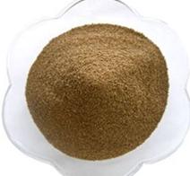Protease bột nguyên liệu